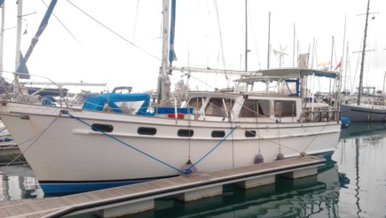 Delivery - Tradewinds 40